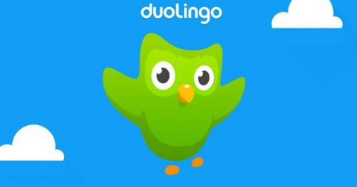 L'application Duolingo pour Android